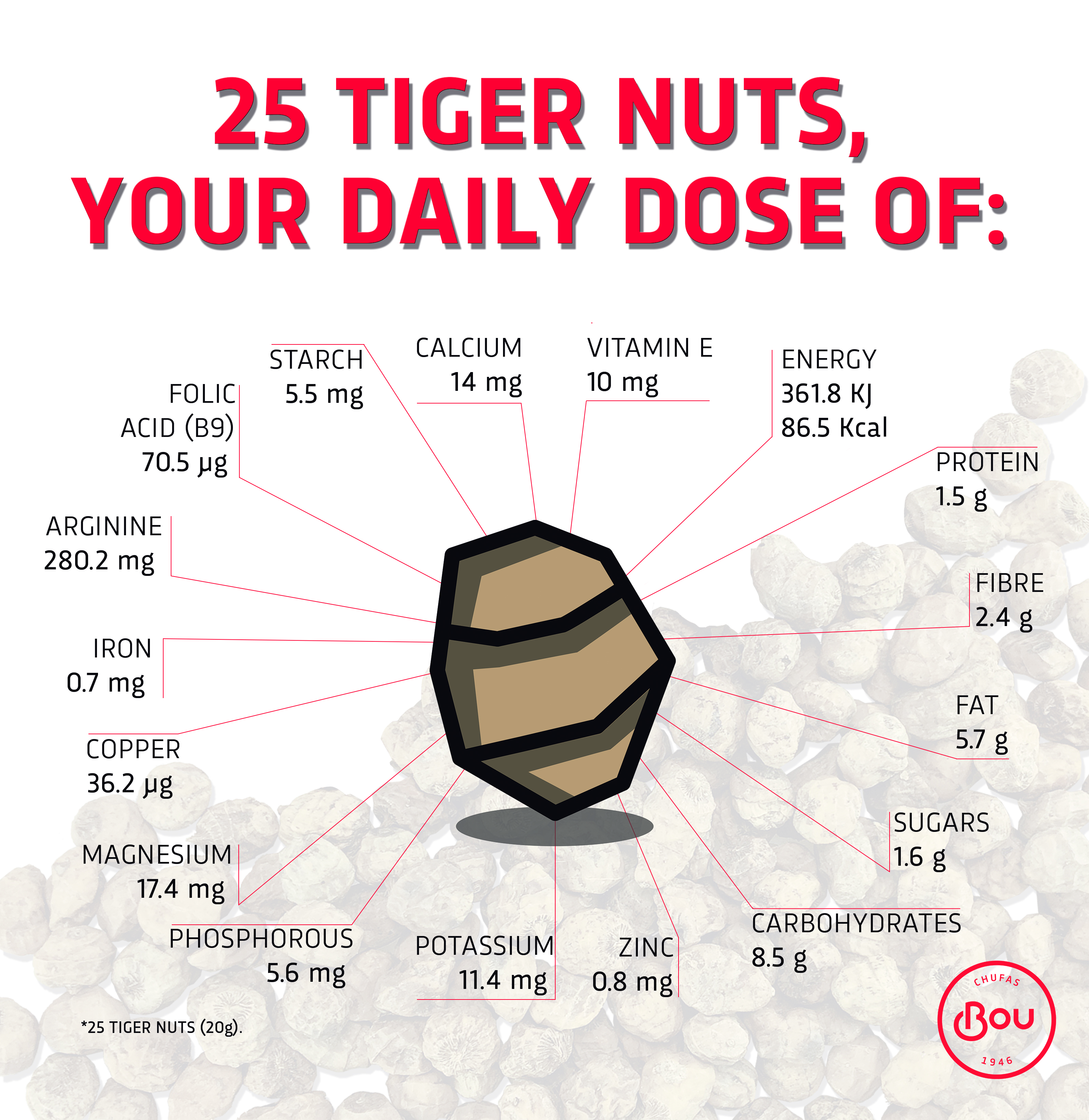 Organic Valencian Tiger Nut The New Superfood You Should Include In Your Daily Diet Chufas Bou